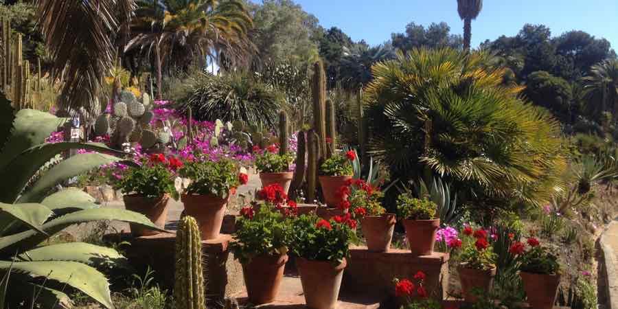 Jardin mediterraneo. El jardin mediterraneo, diseño jardines mediterráneos, jardines mediterráneos pequeños, jardin mediterráneo pequeño, jardin mediterráneo plantas