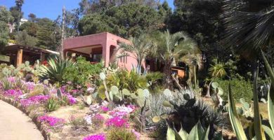 diseñar un jardin mediterraneo